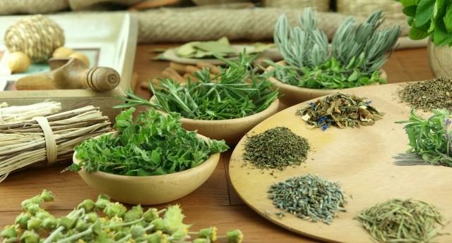 naturopathy botana