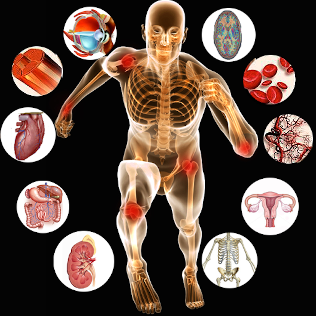 Anatomy-of-Human-Body-and-Physiology-e13768213803021
